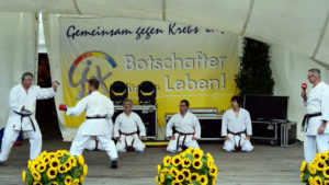 Karate beim Run of Hope
